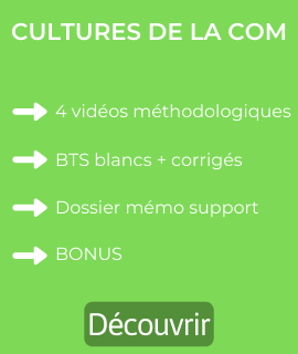 cultures de la communication bts